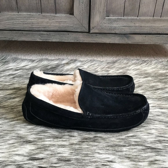 519bfad424f 🚨 SALE! 🚨Brand New Men's UGG Ascot Slipper
